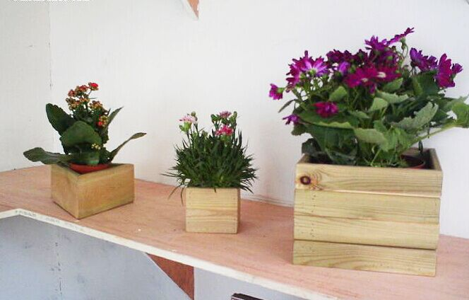 欧式简约懒人塑料小花盆桌面微型花盆多种颜色